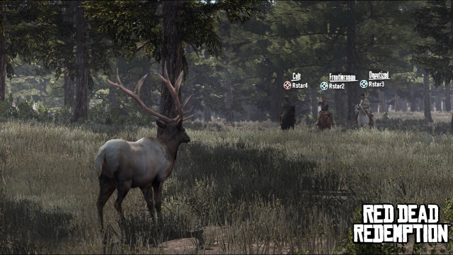 Multiplayer Hunting
